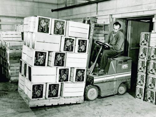 A Clark Carloader transporting a pallet